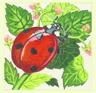 Lady Bug design