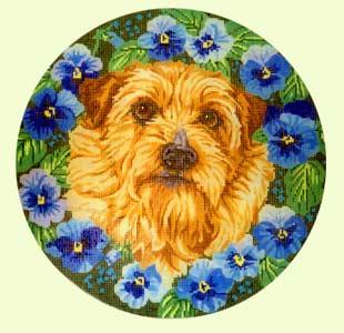 Norfolk Terrier design