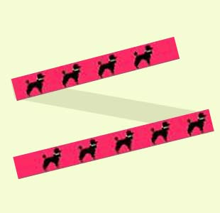 Poodles on Pink design