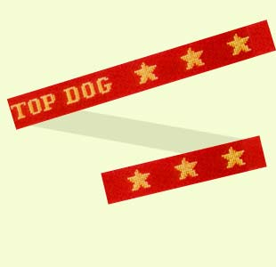 Top Dog design