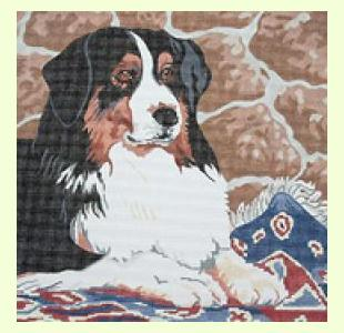 Bernese Mountain Dog design