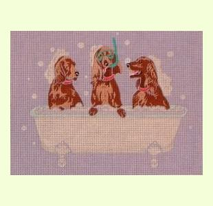 English Setters Spa Day design