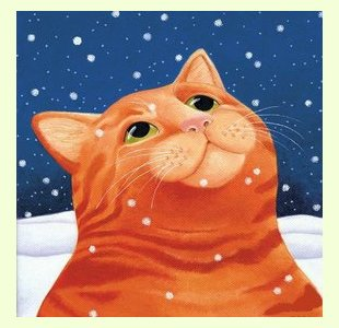 Ginger-Cat design