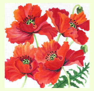 Poppies-Revisted design